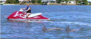 Daytona Beach Dolphin Encounters